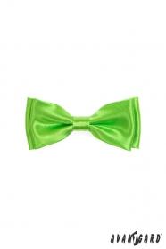 Muszka chłopięca charakterystyczna zielona