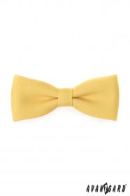 Męska muszka i poszetka w kolorze żółtym