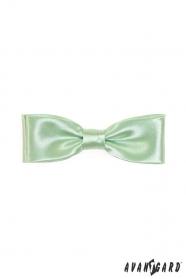 Muszka męska klasyczna, zielona
