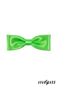 Muszka męska zielony połysk