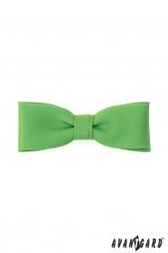 Zielona, charakterystyczna męska muszka